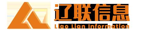 财源大数据建设公共服务平台 - 辽联信息