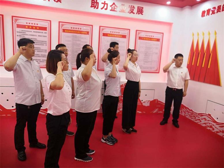 组织新党员集体宣誓、老党员重温入党誓词.jpg