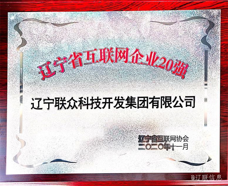 辽联集团荣获辽宁省互联网企业20强3.jpg