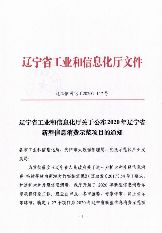 辽联信息数字城区荣获辽宁省新型信息消费示范项目.png